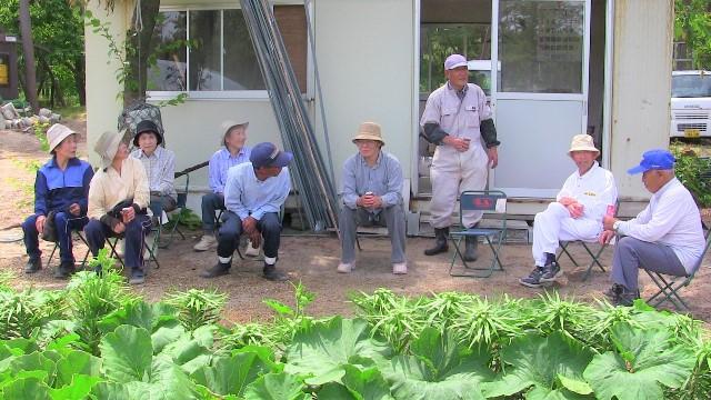 カボチャの栽培指導説明会①